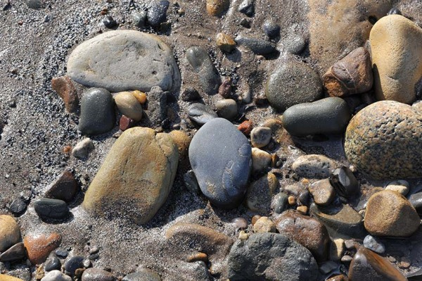 Rock colours on the beach, a toarcian mudstone in the middle