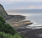 Bay Ness, Robin Hoods Bay, in the evening light at low tide