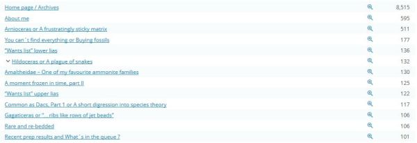 Top visited pages of the blog
