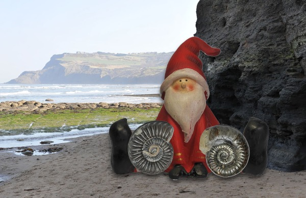 Santa is having a small Coroniceras sp. (left) and a Grammoceras thouarsense (right) leaned against his knees. Ravenscar in the background.